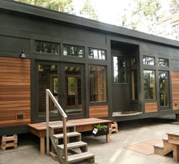 A Simple Guide to Tiny Modern House
